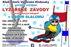 leták-veřejné-lyžařské-závody-2019